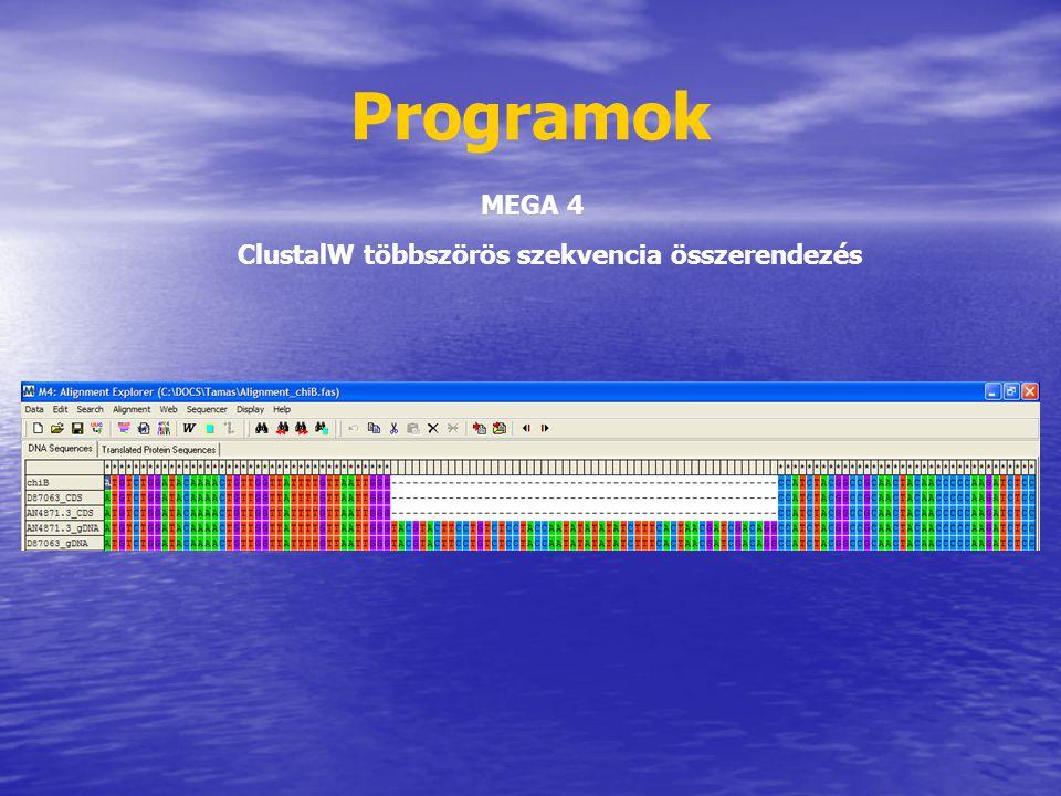 Programok MEGA 4 ClustalW többszörös szekvencia összerendezés