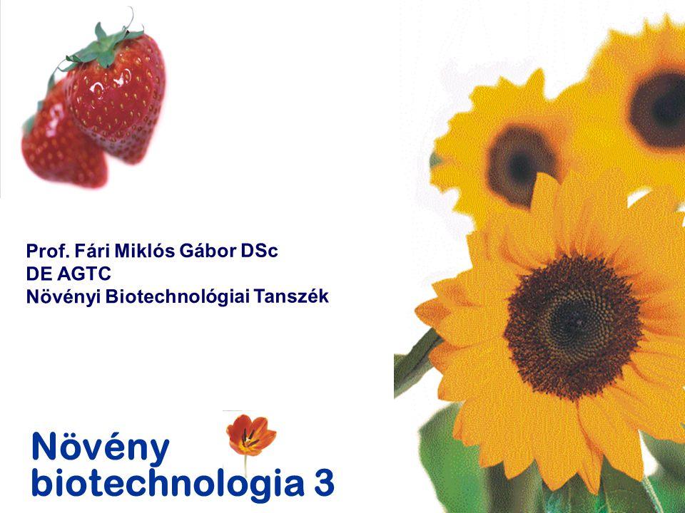 Növény biotechnologia 3 Prof. Fári Miklós Gábor DSc DE AGTC Növényi Biotechnológiai Tanszék