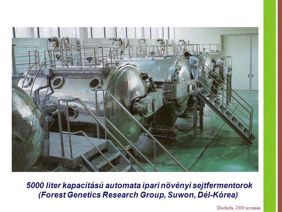 5000 liter kapacitású automata ipari növényi sejtfermentorok (Forest Genetics Research Group, Suwon, Dél-Kórea)