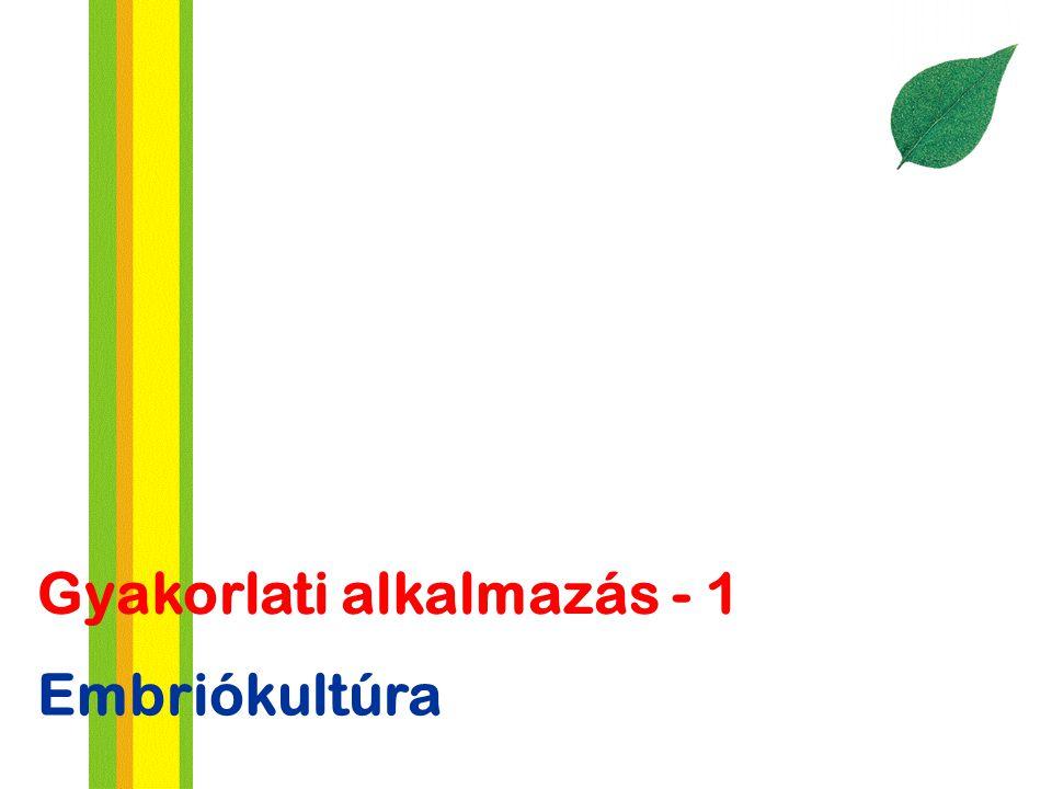 Embriókultúra Gyakorlati alkalmazás - 1