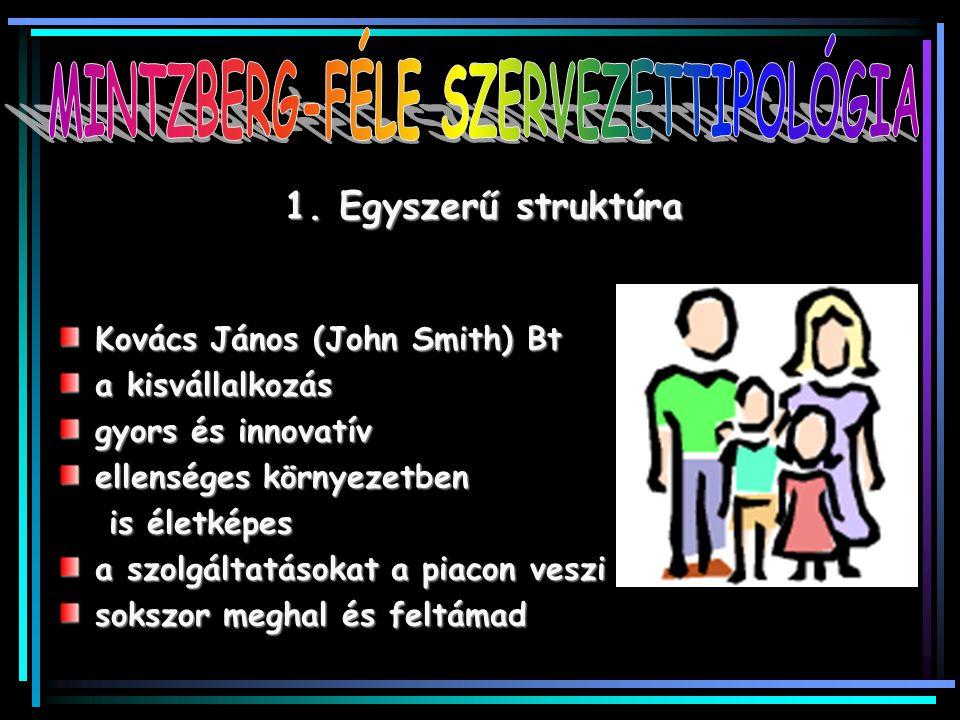 1. Egyszerű struktúra Kovács János (John Smith) Bt a kisvállalkozás gyors és innovatív ellenséges környezetben is életképes a szolgáltatásokat a piaco