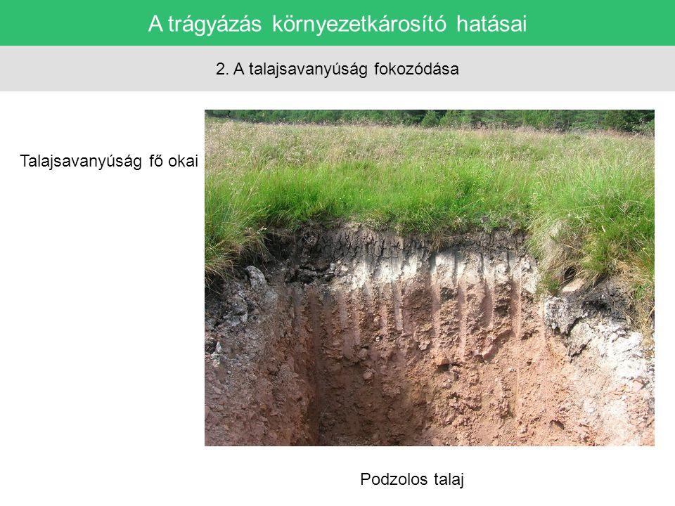 A trágyázás környezetkárosító hatásai 2. A talajsavanyúság fokozódása Talajsavanyúság fő okai Podzolos talaj