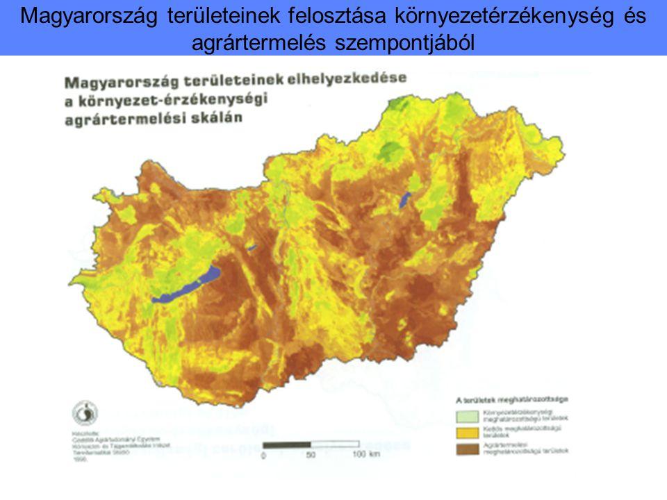 A búza és kukorica termése 1996-2011 Átlagtermés t/ha