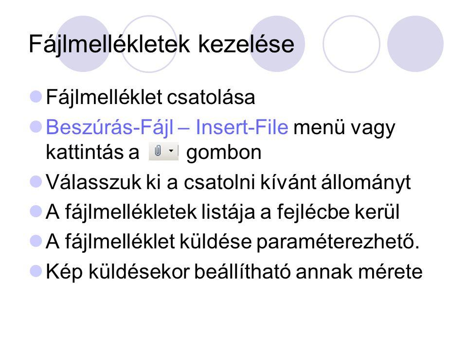 Fájlmellékletek kezelése Fájlmelléklet csatolása Beszúrás-Fájl – Insert-File menü vagy kattintás a gombon Válasszuk ki a csatolni kívánt állományt A f