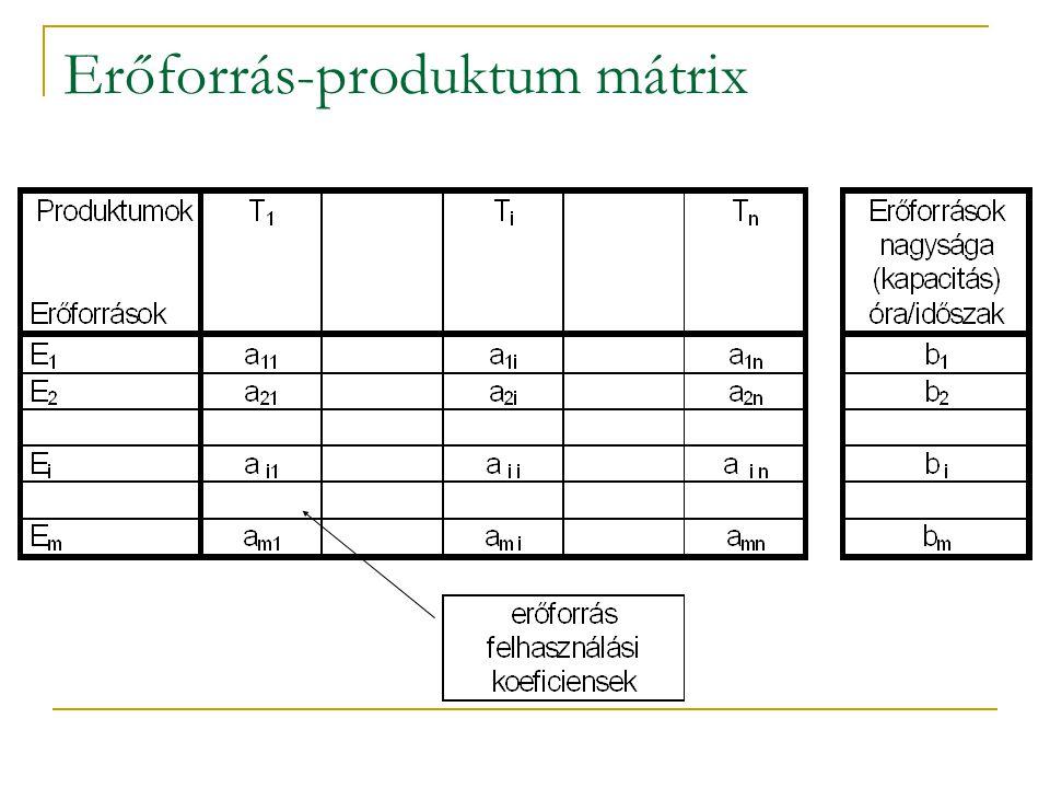 Vállalati rendszermátrix elemei 1.) Az erőforrás - produktum mátrix A vállalat erőforrásainak és produktumainak kapcsolatait line- áris és determinisztikus kapcsolatként - az erőforrás-felhasználási koeficiensek segítségével - írják le.