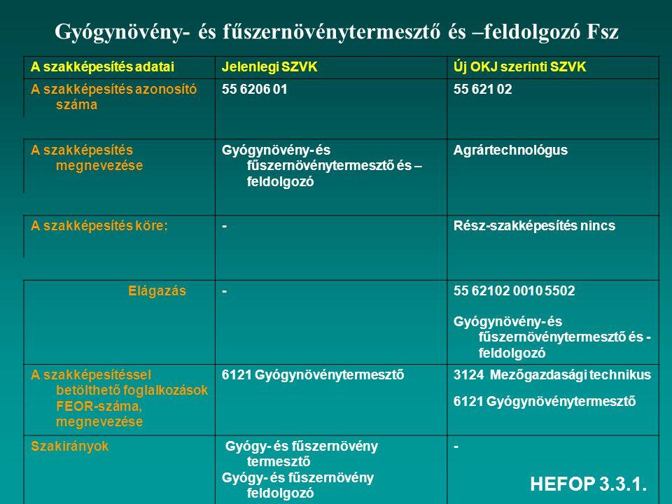 HEFOP 3.3.1.Tantárgyi tematika módosítása- 1 I.