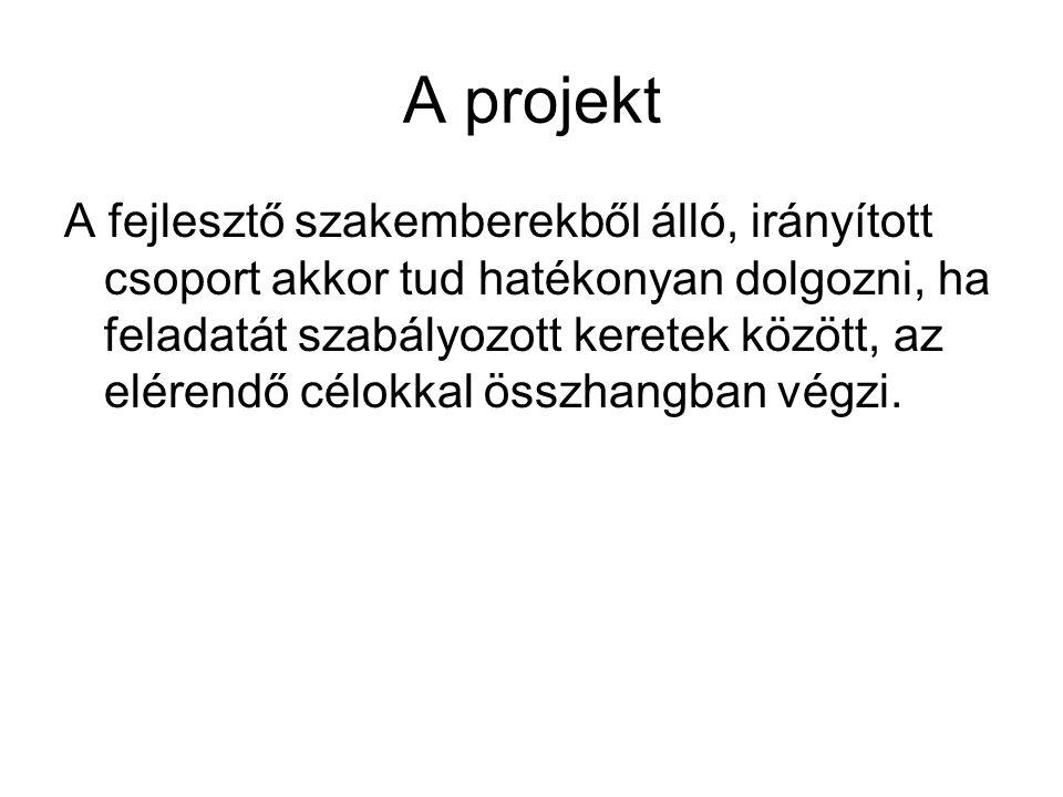 A projekt A fejlesztő szakemberekből álló, irányított csoport akkor tud hatékonyan dolgozni, ha feladatát szabályozott keretek között, az elérendő cél