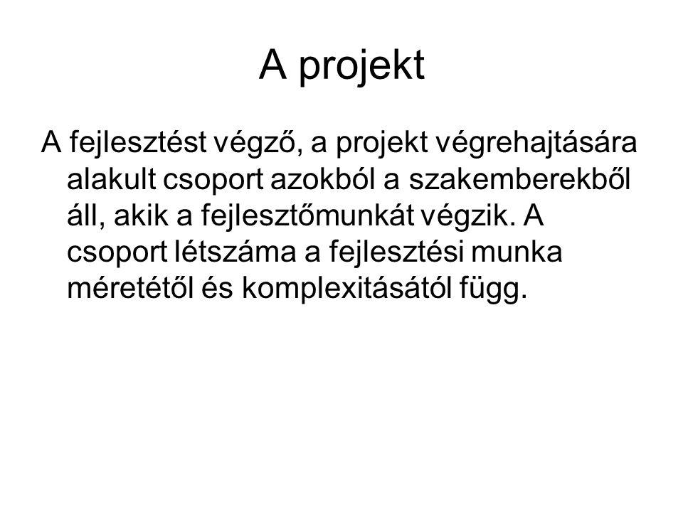 A projekt A fejlesztést végző, a projekt végrehajtására alakult csoport azokból a szakemberekből áll, akik a fejlesztőmunkát végzik. A csoport létszám