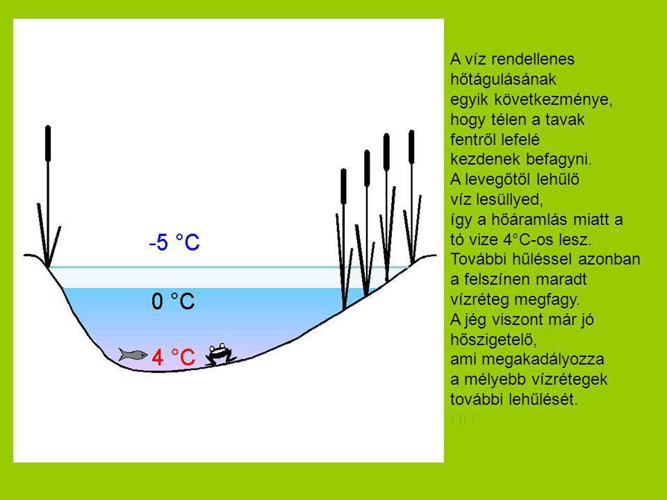 A víz rendellenes hőtágulásának egyik következménye, hogy télen a tavak fentről lefelé kezdenek befagyni. A levegőtől lehűlő víz lesüllyed, így a hőár