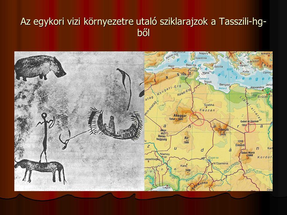 Az egykori vizi környezetre utaló sziklarajzok a Tasszili-hg- ből