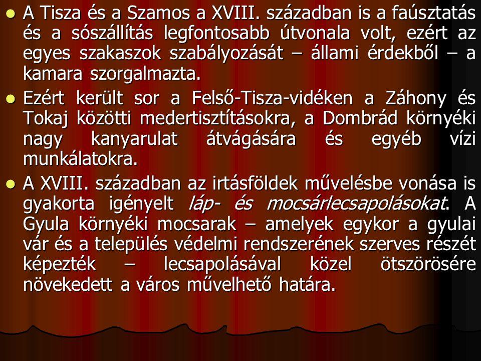 A Tisza és a Szamos a XVIII.