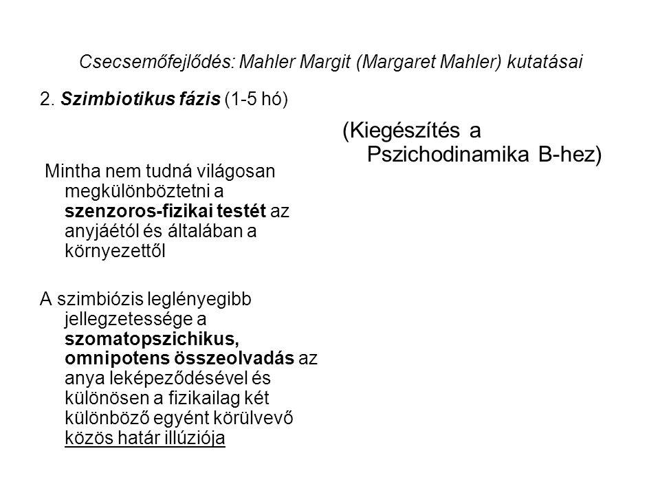 Csecsemőfejlődés: Mahler Margit (Margaret Mahler) kutatásai 2. Szimbiotikus fázis (1-5 hó) Mintha nem tudná világosan megkülönböztetni a szenzoros-fiz