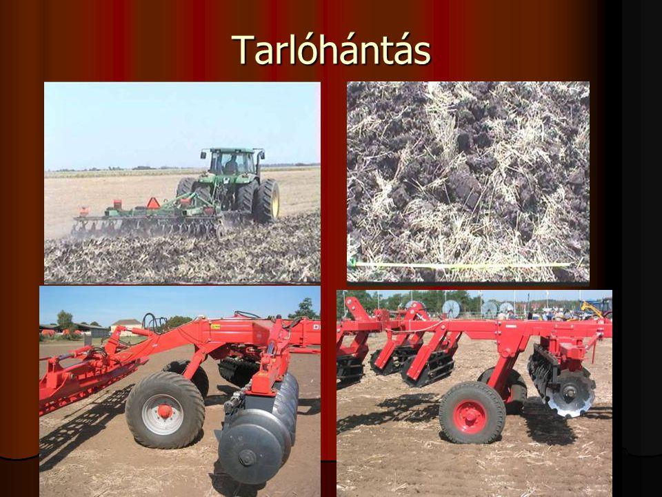 Őszi vetésű növények talajművelési rendszere korán lekerülő elővetemények után TARLÓ tarlóhántás alapművelés (nyári szántás) elmunkálás alapművelés (forgatás nélkül) elmunkálás (teljes felületi művelés) alapművelés (nyári szántás) elmunkálás ápoló talajmunka magágykészítés vetés vetés utáni elmunkálás Nyiri L.