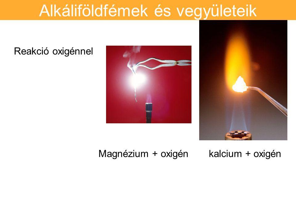 Alkáliföldfémek és vegyületeik Reakció oxigénnel Magnézium + oxigén kalcium + oxigén