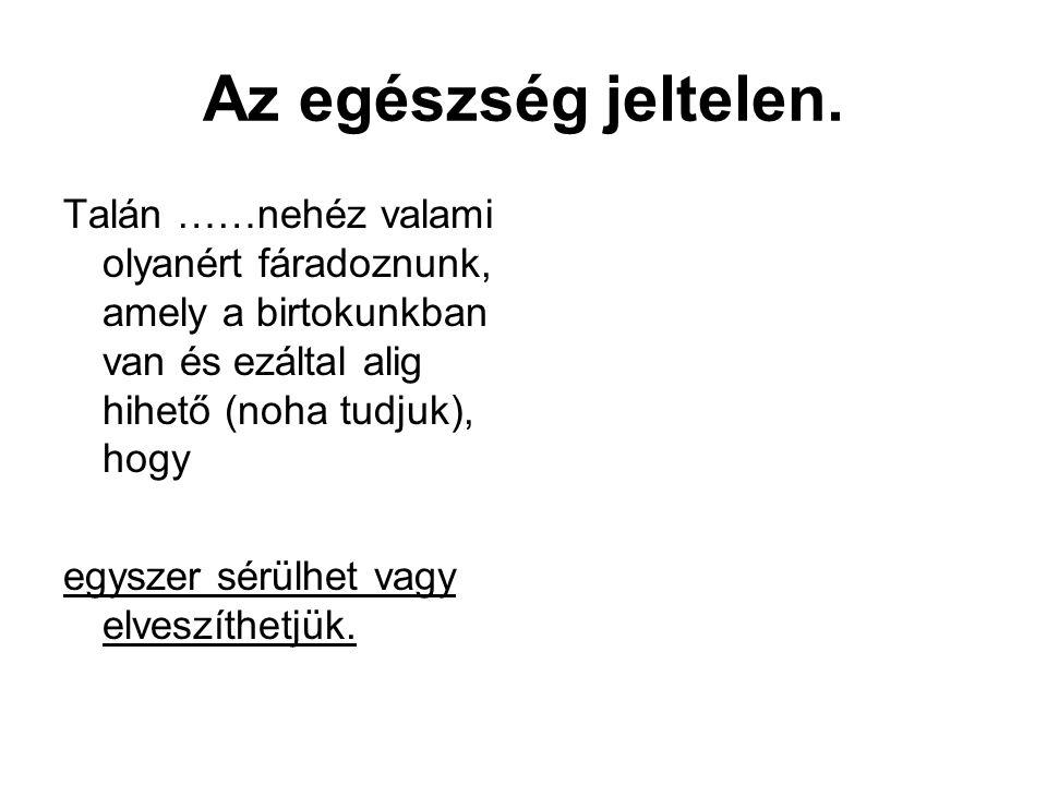 A bohócdoktorok 2000 óta rendszeresen szolgálnak a legnagyobb magyar gyermekkórházakban és klinikákon (Magyar Bohócdoktorok Alapítvány, 2003.) Szolgálatuk kedvező hatásait ma már senki sem vonja kétségbe.