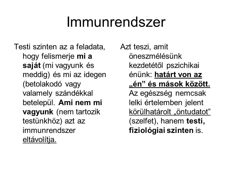 Immunrendszer Testi szinten az a feladata, hogy felismerje mi a saját (mi vagyunk és meddig) és mi az idegen (betolakodó vagy valamely szándékkal bete