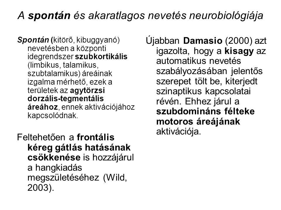 A spontán és akaratlagos nevetés neurobiológiája Spontán (kitörő, kibuggyanó) nevetésben a központi idegrendszer szubkortikális (limbikus, talamikus,
