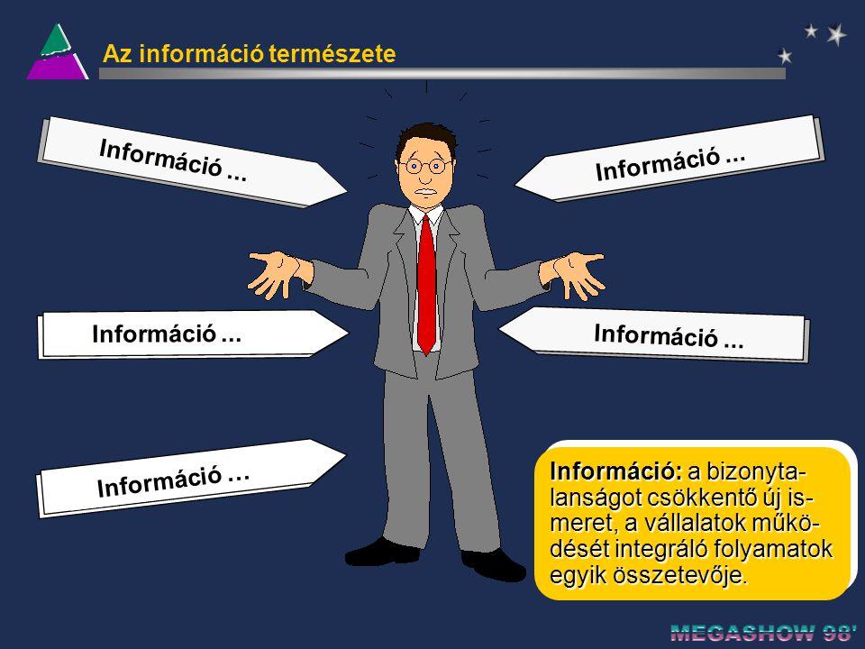 A vezetői döntéshozatal hierachikus és tevékenységi területek szerint Döntéshozók Tulajdonosok és Felsővezetés Középszintű Vezetés Operatív Irányítás Munkavállalók Döntéstípusok Stratégiai döntések Taktikai és szabályozási döntések Operatív döntések Végrehajtás (tranzakciók) MarketingInnovációEmberierőforrásInformációLogisztikaTermelésPénzügy Tevékenységi területek Stratégiai döntések: a vállalat működésének főbb irányait megszabó, a célokat és eszközöket egymáshoz rendelő, hosszabb távú döntések.
