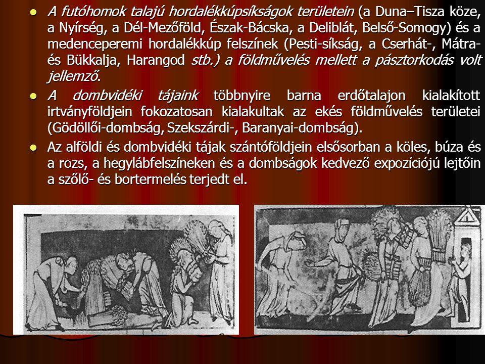 A futóhomok talajú hordalékkúpsíkságok területein (a Duna–Tisza köze, a Nyírség, a Dél-Mezőföld, Észak-Bácska, a Deliblát, Belső-Somogy) és a medencep