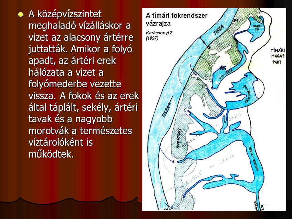 A középvízszintet meghaladó vízálláskor a vizet az alacsony ártérre juttatták. Amikor a folyó apadt, az ártéri erek hálózata a vizet a folyómederbe ve