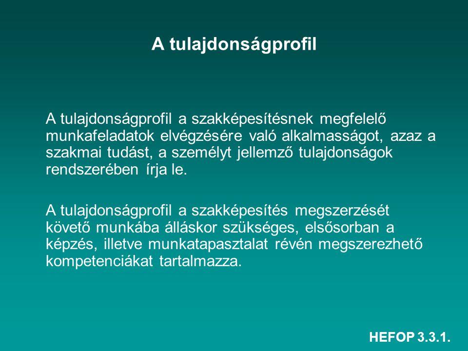 HEFOP 3.3.1.A tulajdonságprofil kategóriái, tagolódása I.