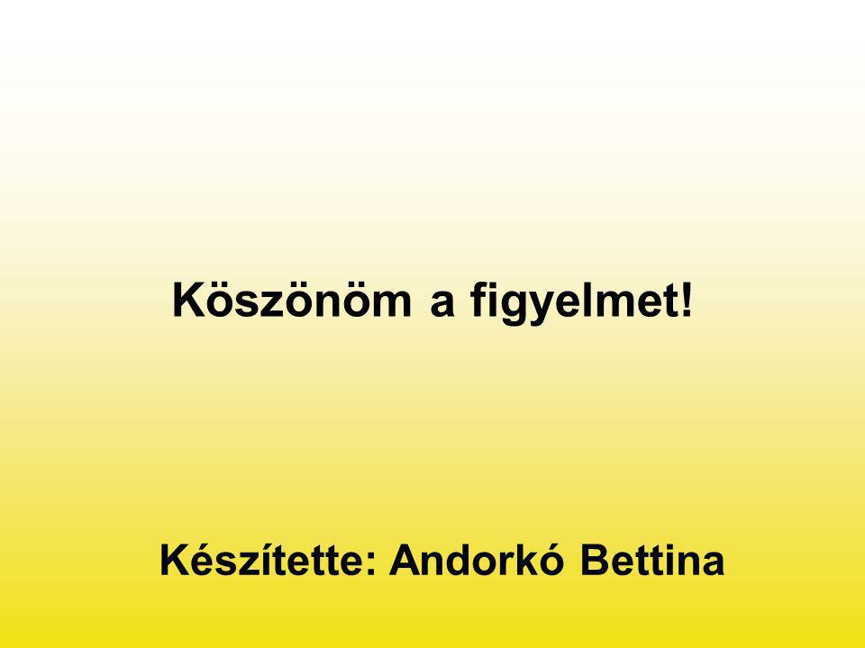 Köszönöm a figyelmet! Készítette: Andorkó Bettina
