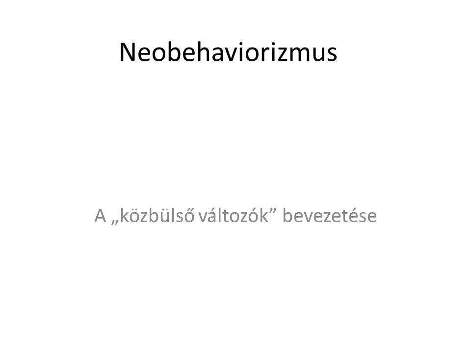 """Neobehaviorizmus A """"közbülső változók"""" bevezetése"""