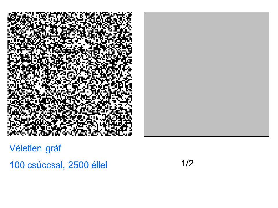 Véletlen gráf 100 csúccsal, 2500 éllel 1/2
