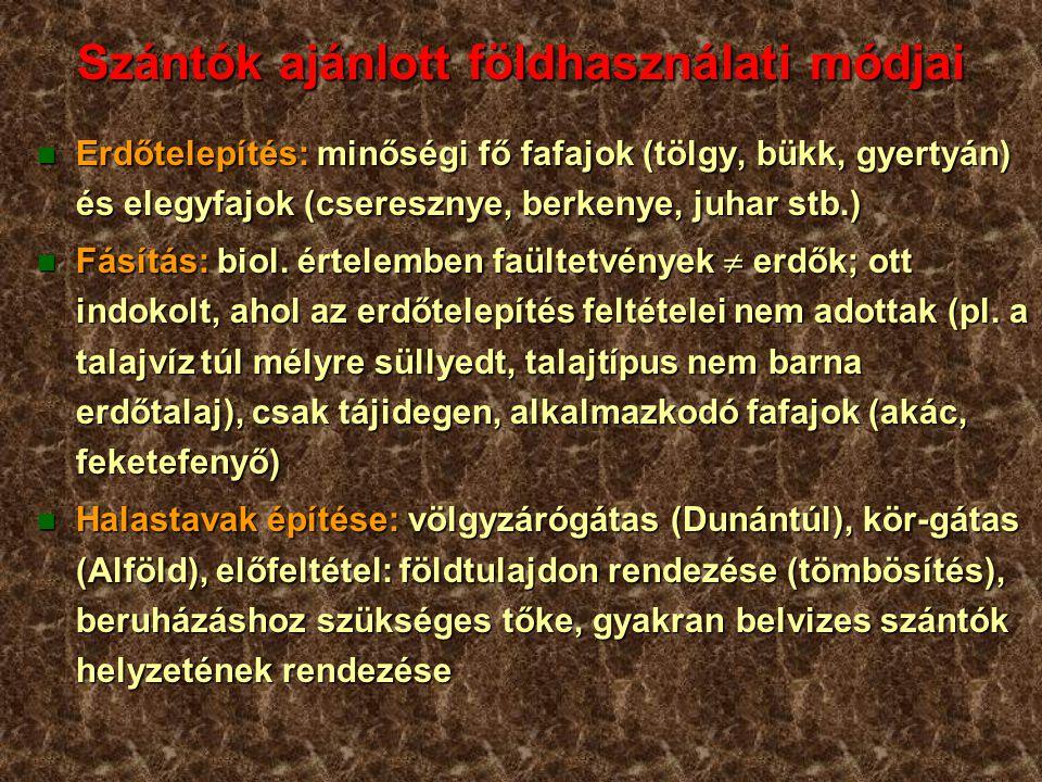 Szántók ajánlott földhasználati módjai n Erdőtelepítés: minőségi fő fafajok (tölgy, bükk, gyertyán) és elegyfajok (cseresznye, berkenye, juhar stb.) n Fásítás: biol.