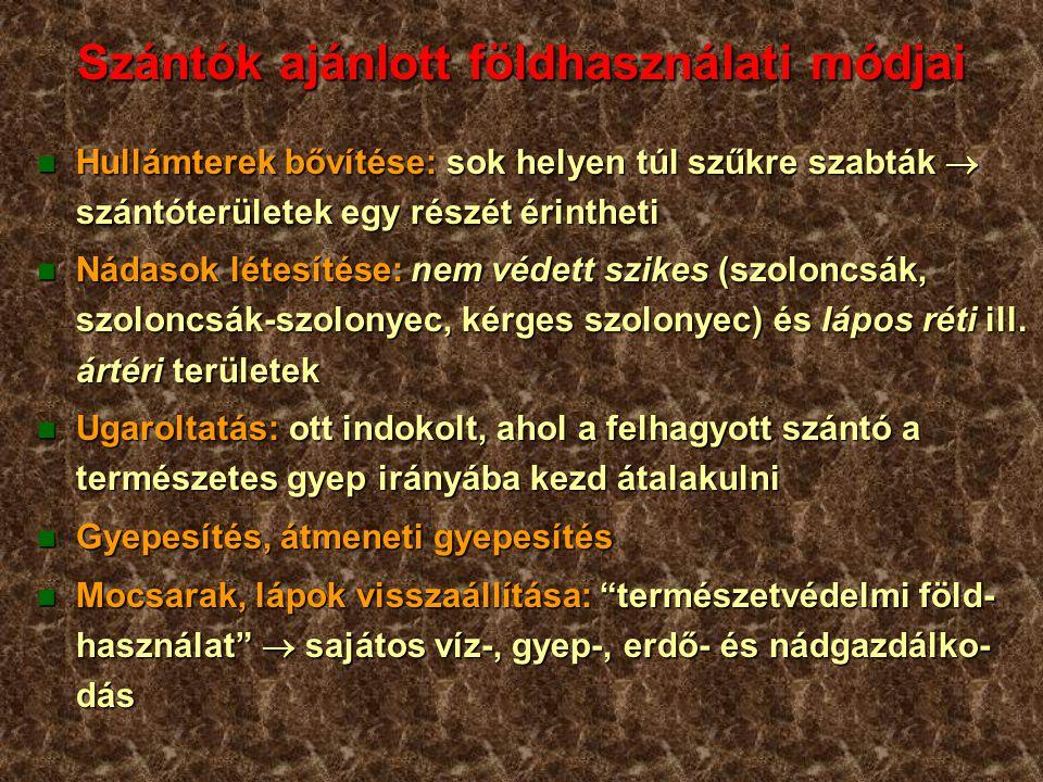 Szántók ajánlott földhasználati módjai n Hullámterek bővítése: sok helyen túl szűkre szabták  szántóterületek egy részét érintheti n Nádasok létesítése: nem védett szikes (szoloncsák, szoloncsák-szolonyec, kérges szolonyec) és lápos réti ill.