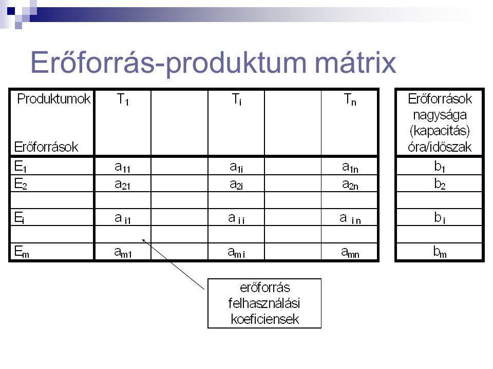 Vállalati rendszermátrix elemei 1.) Az erőforrás - produktum mátrix A vállalat erőforrásainak és produktumainak kapcsolatait line-áris és determiniszt