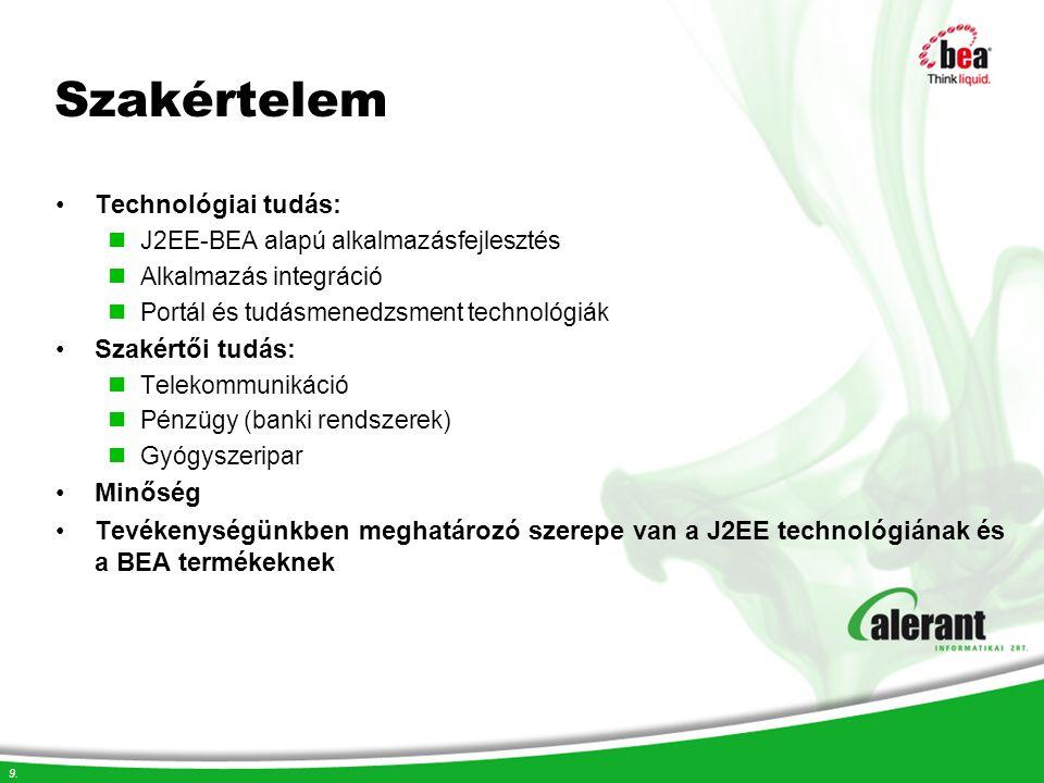 9. Szakértelem Technológiai tudás: J2EE-BEA alapú alkalmazásfejlesztés Alkalmazás integráció Portál és tudásmenedzsment technológiák Szakértői tudás: