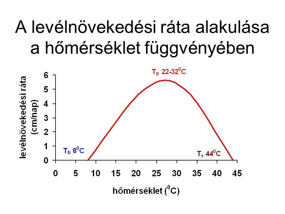 A levélnövekedési ráta alakulása a hőmérséklet függvényében