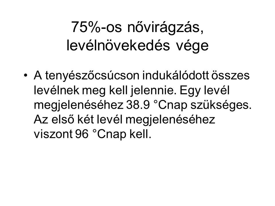 75%-os nővirágzás, levélnövekedés vége A tenyészőcsúcson indukálódott összes levélnek meg kell jelennie. Egy levél megjelenéséhez 38.9 °Cnap szükséges