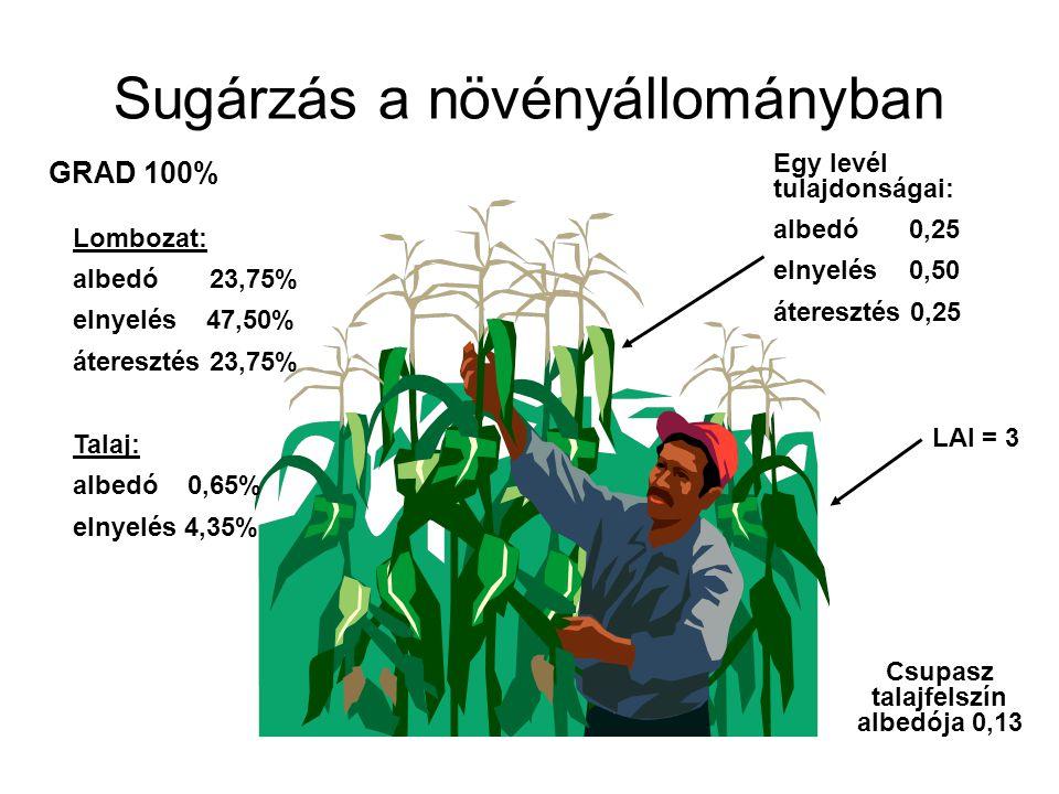Sugárzás a növényállományban GRAD 100% Egy levél tulajdonságai: albedó 0,25 elnyelés 0,50 áteresztés 0,25 Csupasz talajfelszín albedója 0,13 Lombozat: