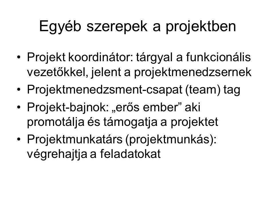 Egyéb szerepek a projektben Projekt koordinátor: tárgyal a funkcionális vezetőkkel, jelent a projektmenedzsernek Projektmenedzsment-csapat (team) tag