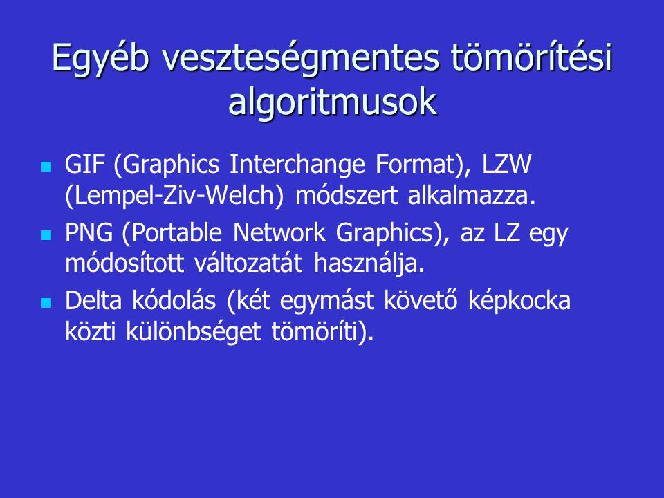 Egyéb veszteségmentes tömörítési algoritmusok GIF (Graphics Interchange Format), LZW (Lempel-Ziv-Welch) módszert alkalmazza. PNG (Portable Network Gra