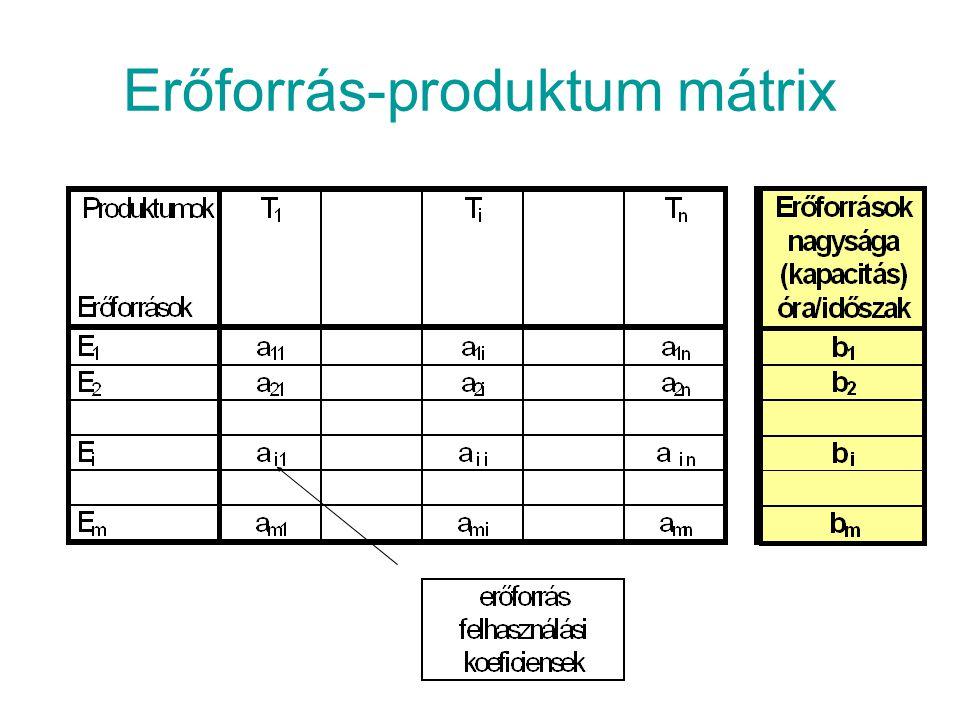 Környezeti mátrix