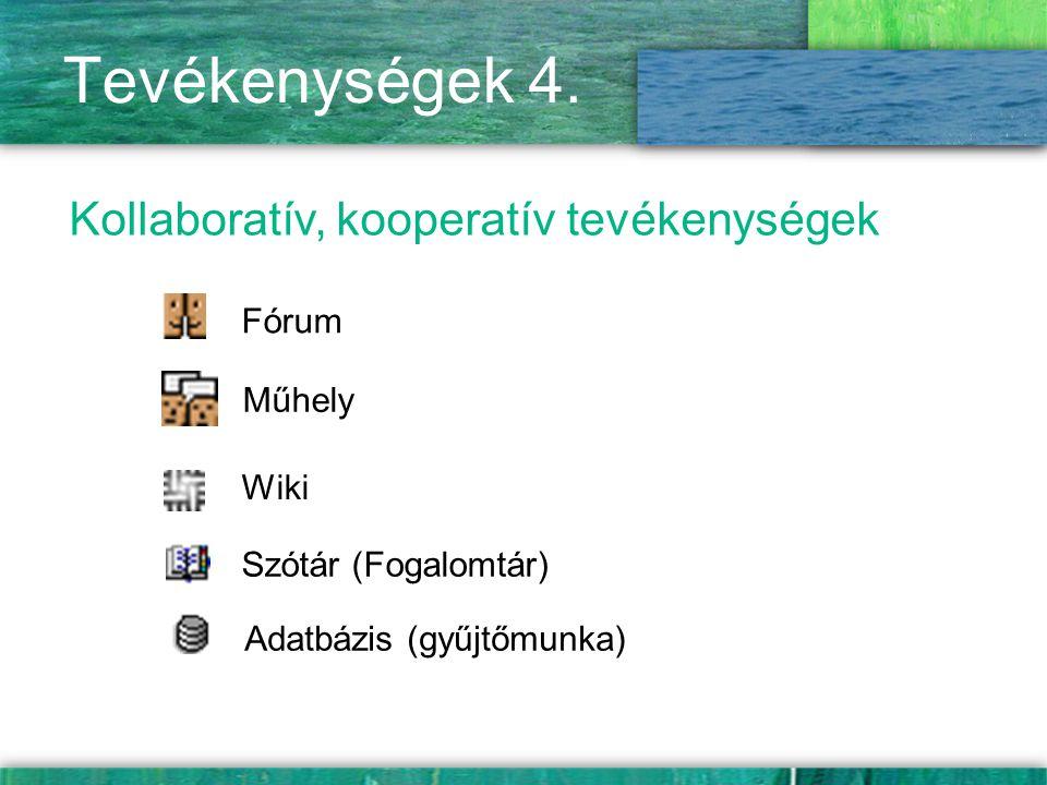 Tevékenységek 4. Kollaboratív, kooperatív tevékenységek Fórum Műhely Szótár (Fogalomtár) Adatbázis (gyűjtőmunka) Wiki