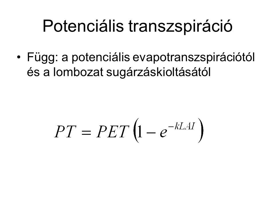 Potenciális transzspiráció Függ: a potenciális evapotranszspirációtól és a lombozat sugárzáskioltásától