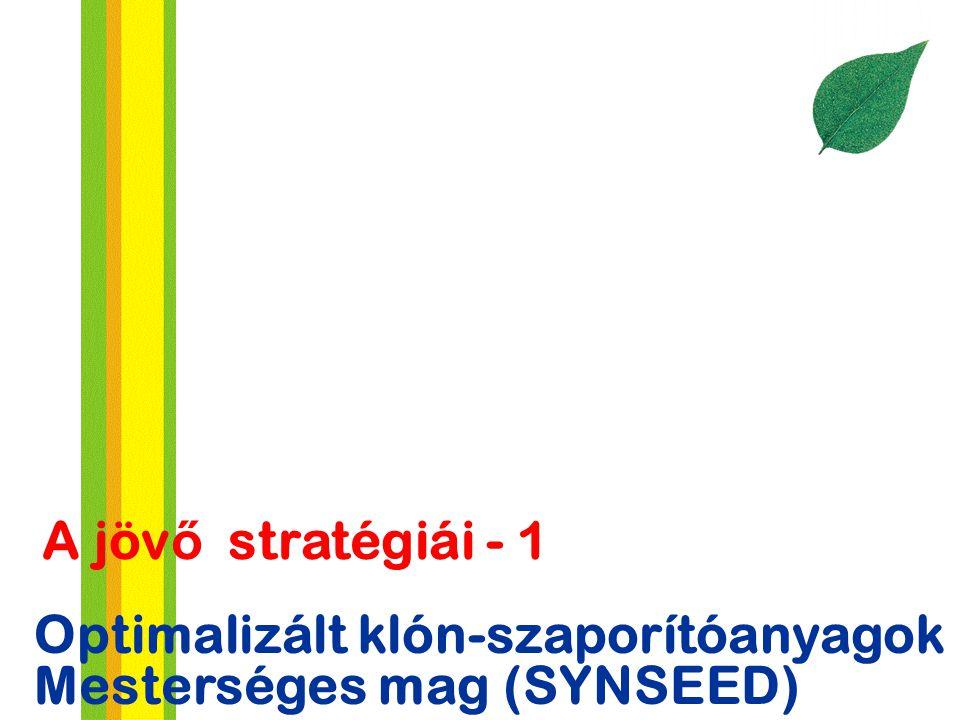 Optimalizált klón-szaporítóanyagok Mesterséges mag (SYNSEED) A jöv ő stratégiái - 1