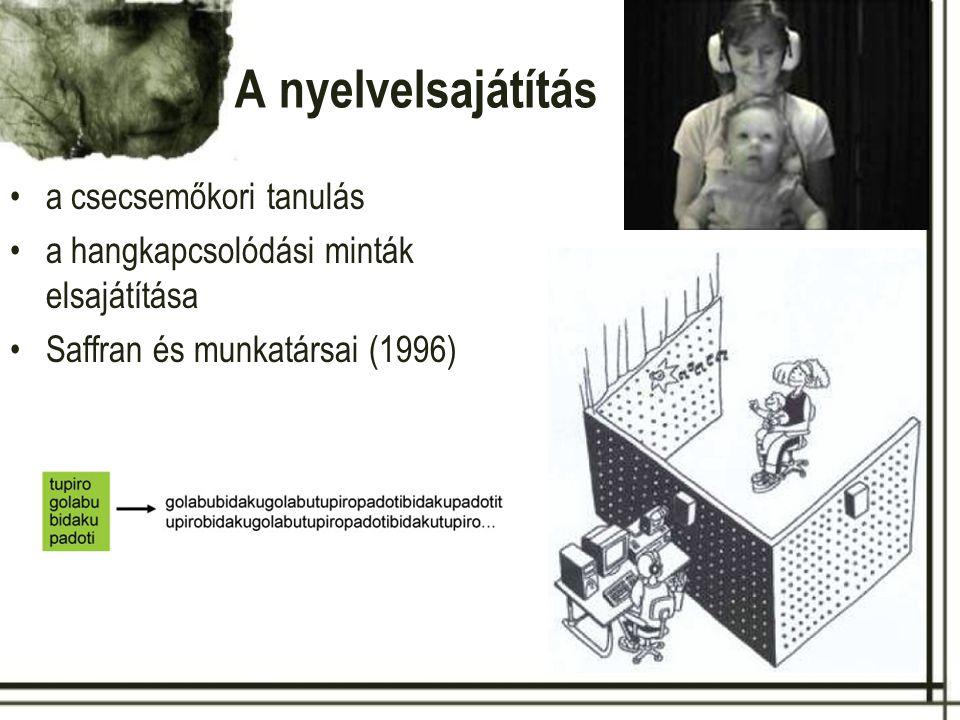 A nyelvelsajátítás a csecsemőkori tanulás a hangkapcsolódási minták elsajátítása Saffran és munkatársai (1996)