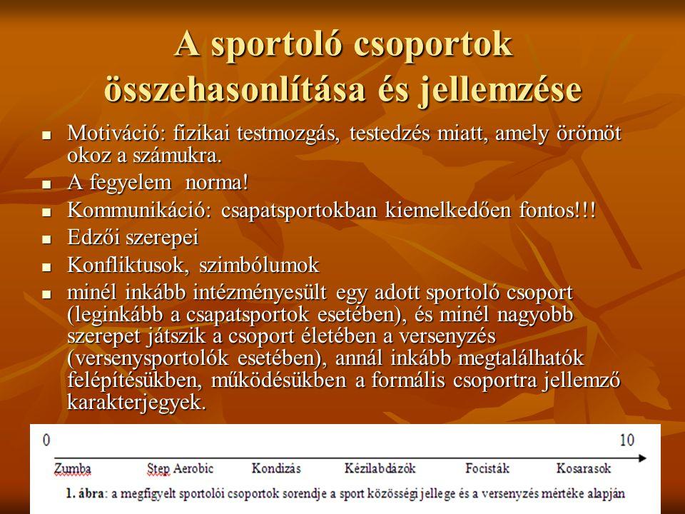 A sportoló csoportok összehasonlítása és jellemzése Motiváció: fizikai testmozgás, testedzés miatt, amely örömöt okoz a számukra.