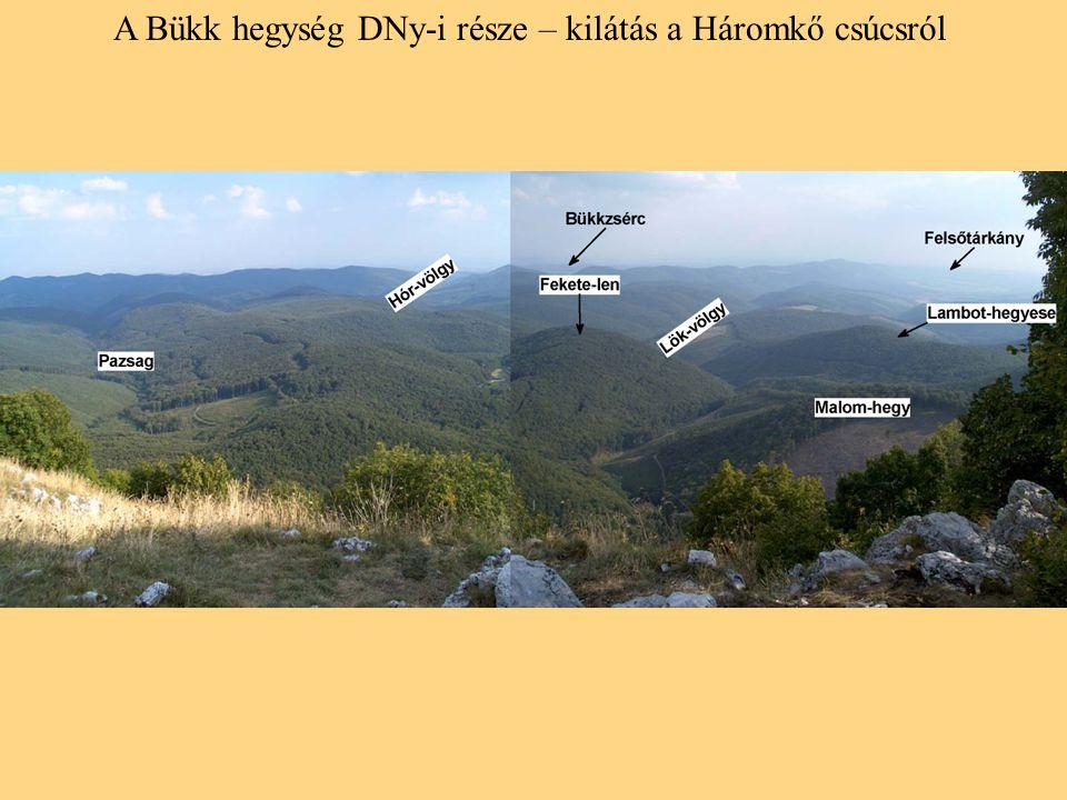 A Bükk hegység DNy-i része – kilátás a Háromkő csúcsról