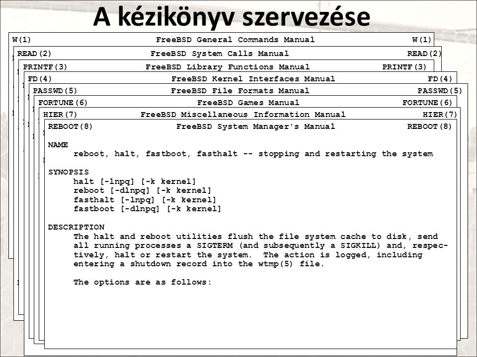 A kézikönyv szervezése W(1) FreeBSD General Commands Manual W(1) NAME w -- display who is logged in and what they are doing SYNOPSIS w [-dhin] [-M cor
