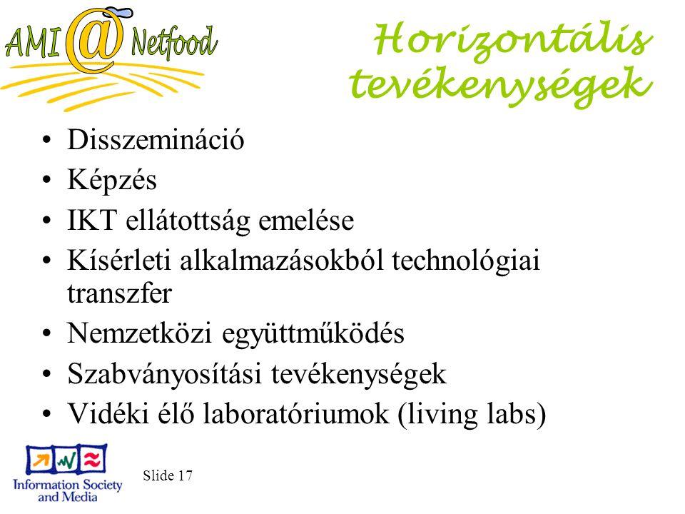 Slide 17 Horizontális tevékenységek Disszemináció Képzés IKT ellátottság emelése Kísérleti alkalmazásokból technológiai transzfer Nemzetközi együttműködés Szabványosítási tevékenységek Vidéki élő laboratóriumok (living labs)