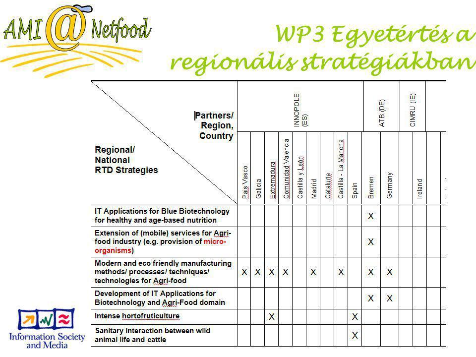 Slide 29 WP3 Egyetértés a regionális stratégiákban