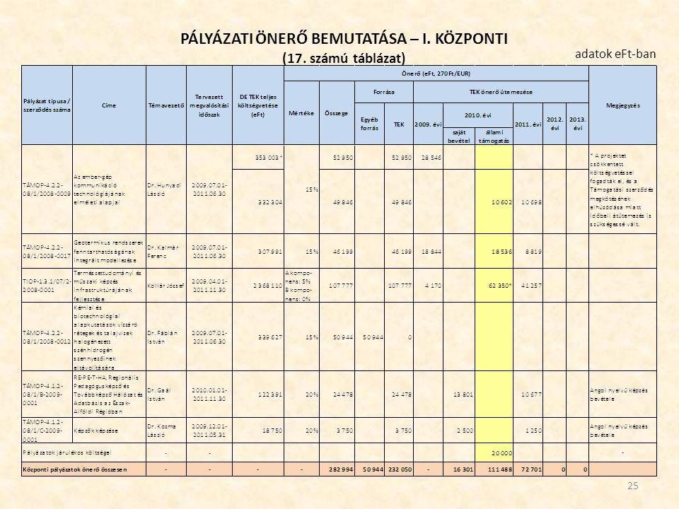 PÁLYÁZATI ÖNERŐ BEMUTATÁSA – I. KÖZPONTI (17. számú táblázat) 25 adatok eFt-ban