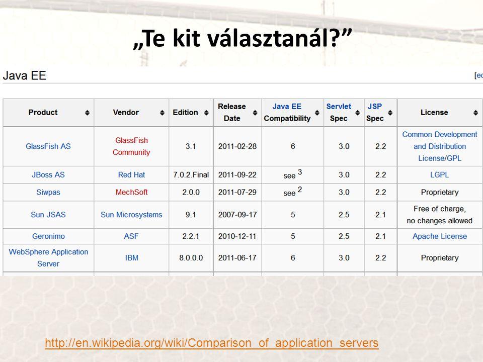 """Te kit választanál?"" http://en.wikipedia.org/wiki/Comparison_of_application_servers"