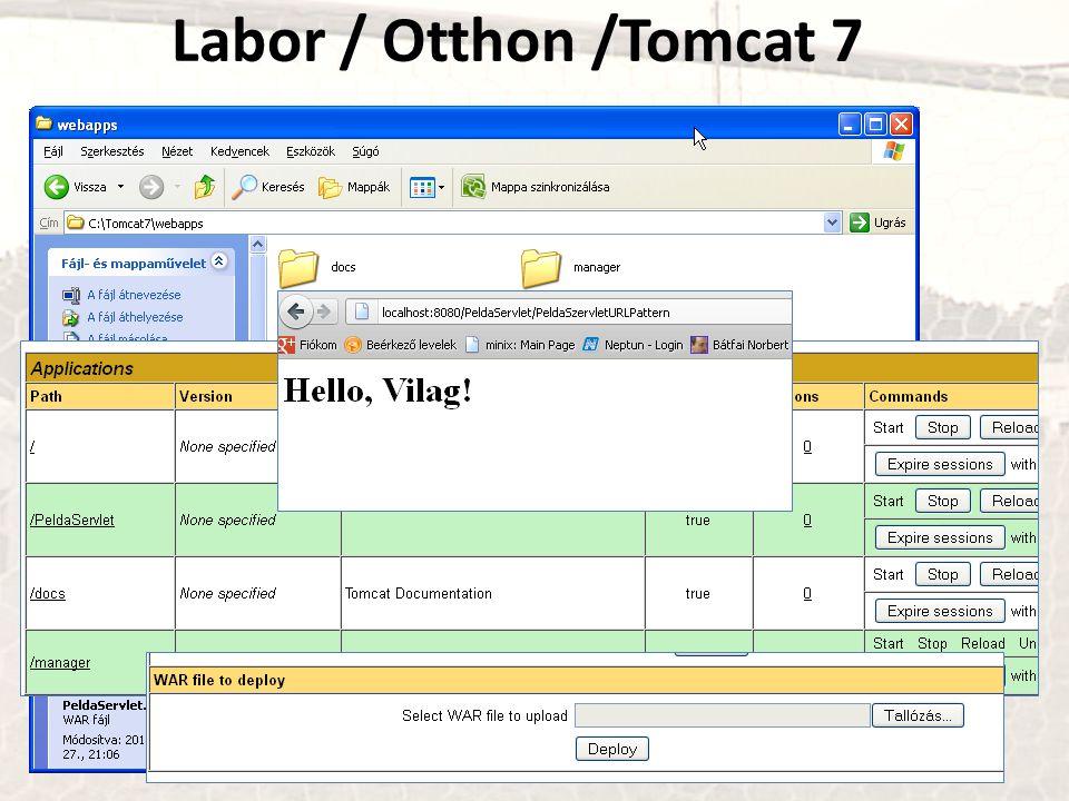 Labor / Otthon /Tomcat 7